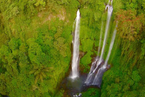 Bali_4_500x333