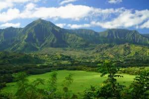 Hawaii_8_500x333