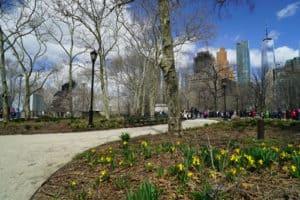New_York_10_500x333