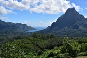 Polynesie_2_500x333