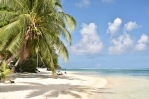 Polynesie_8_500x333