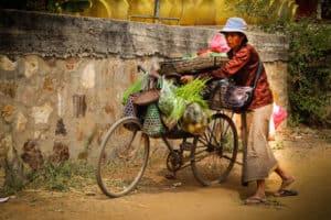 laos_cambodge_10_500x333