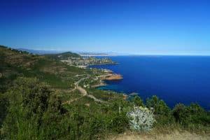 Provence_5_500X333