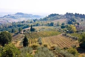 Toscane_1_500X333