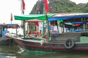 Vietnam__6_500X333